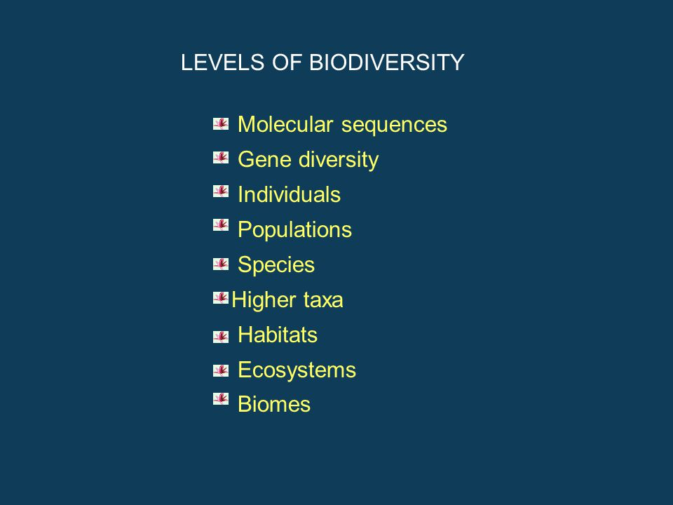 What is Biodiversity Biodiversity refers to the variety and variability of living materials and ecological complexes in a given area and comprises spe