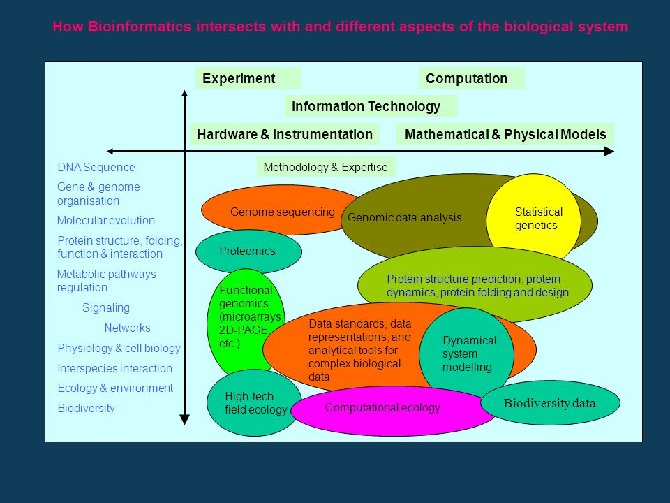 What is Bioinformatics ? Bioinformatics is an emerging field of science growing from the application of mathematics, statistics, and information techn