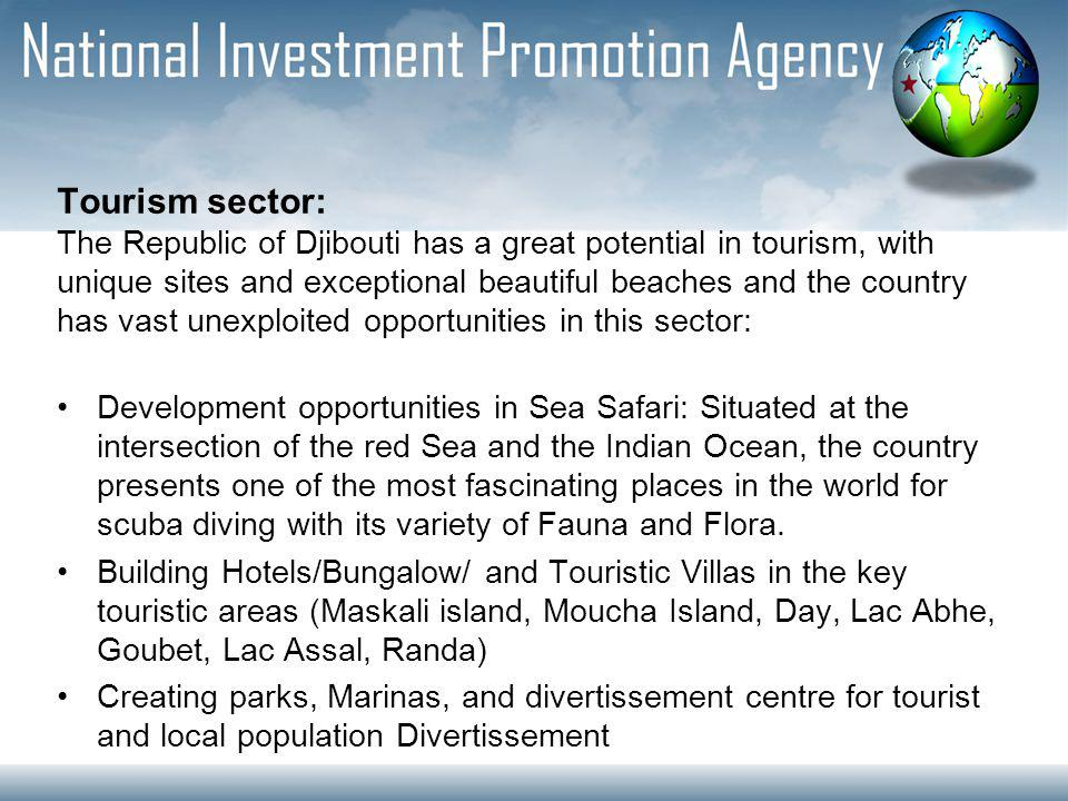 Tourism sector: The Republic of Djibouti has a great potential in tourism, with unique sites and exceptional beautiful beaches and the country has vast unexploited opportunities in this sector: Development opportunities in Sea Safari: Situated at the intersection of the red Sea and the Indian Ocean, the country presents one of the most fascinating places in the world for scuba diving with its variety of Fauna and Flora.