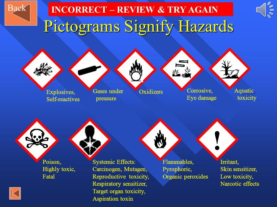 ! Explosives, Self-reactives Question 2: click the correct PICTOGRAM