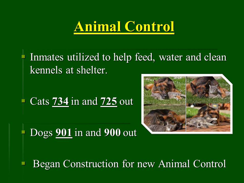 Animal Control Inmates utilized to help feed, water and clean kennels at shelter.