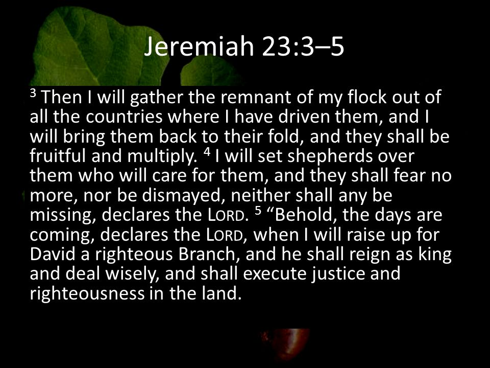 Jeremiah 23:3–5 3 Then I will gather the remnant of my flock out of all the countries where I have driven them, and I will bring them back to their fold, and they shall be fruitful and multiply.