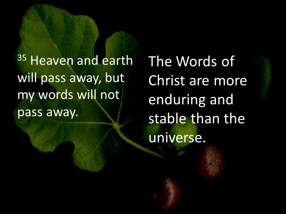 35 Heaven and earth will pass away, but my words will not pass away.