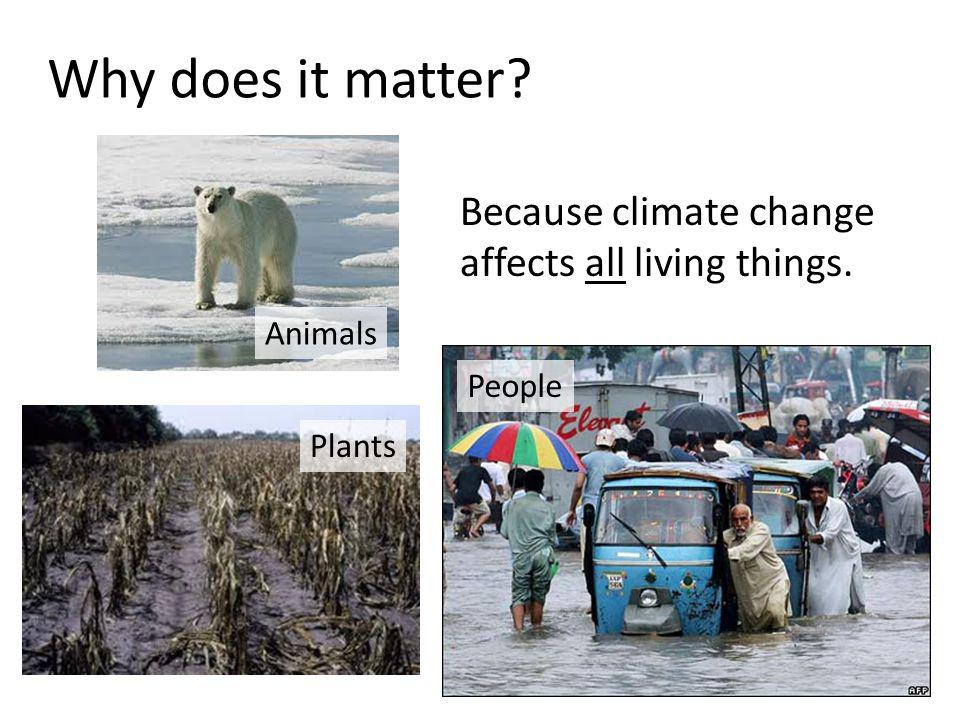 Why does it matter? Because climate change affects all living things. People Animals Plants