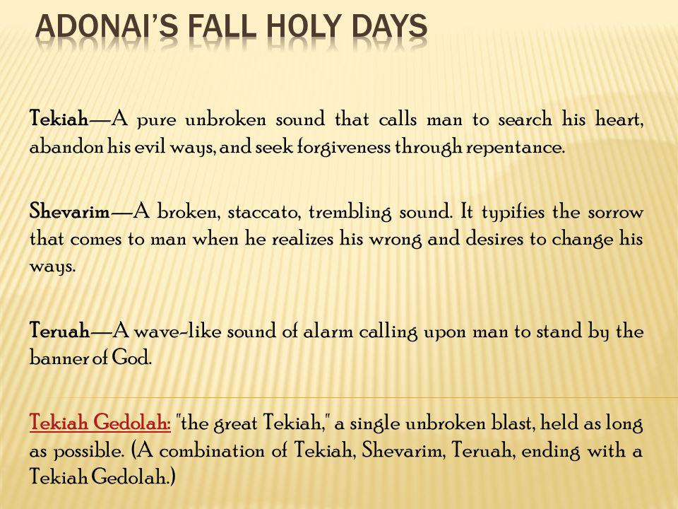 TekiahA pure unbroken sound that calls man to search his heart, abandon his evil ways, and seek forgiveness through repentance. ShevarimA broken, stac