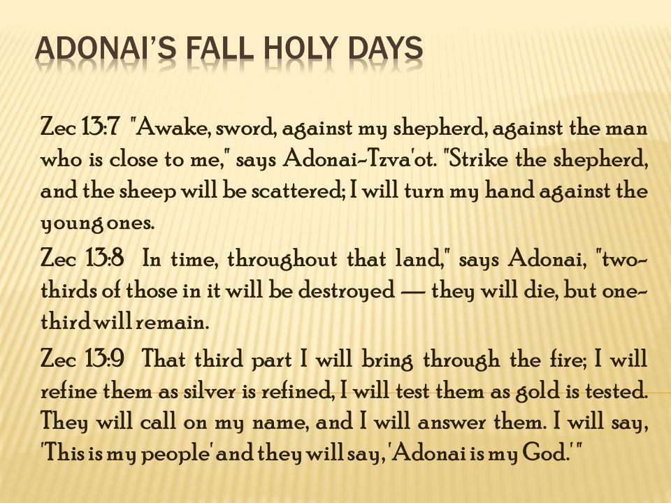 The Seven Moadim Peasch/Passover Hag Matzah/Feast of unleavened bread Yom HaBikkurim/First Fruit Shavuot Yom Teruah/Trumpets Yom Kippur/day of Atonement Sukkot/Feast of Tabernacles