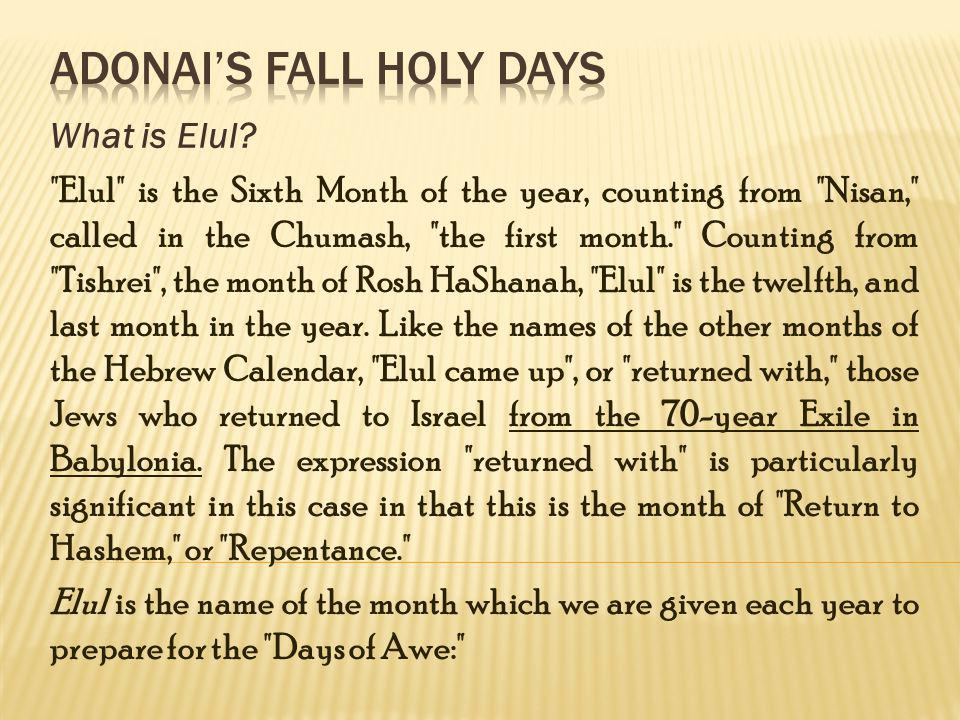 The Festival of Lights (The Light of the Temple) Why is this phase so important for us in the acharit-hayamim .