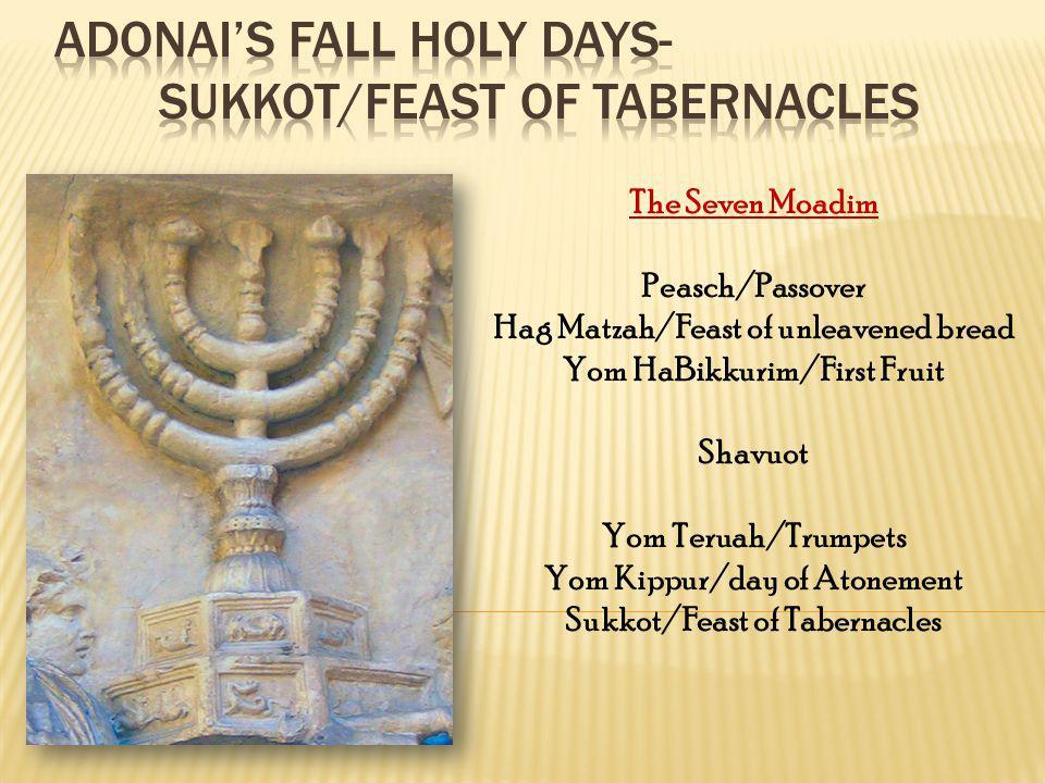 The Seven Moadim Peasch/Passover Hag Matzah/Feast of unleavened bread Yom HaBikkurim/First Fruit Shavuot Yom Teruah/Trumpets Yom Kippur/day of Atoneme