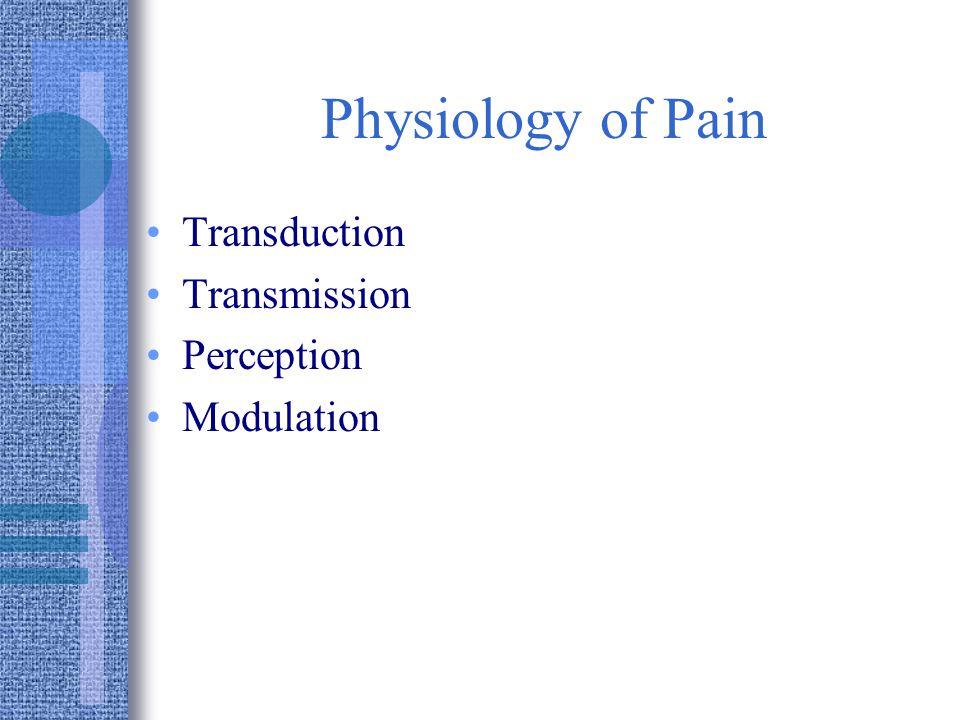 Physiology of Pain Transduction Transmission Perception Modulation