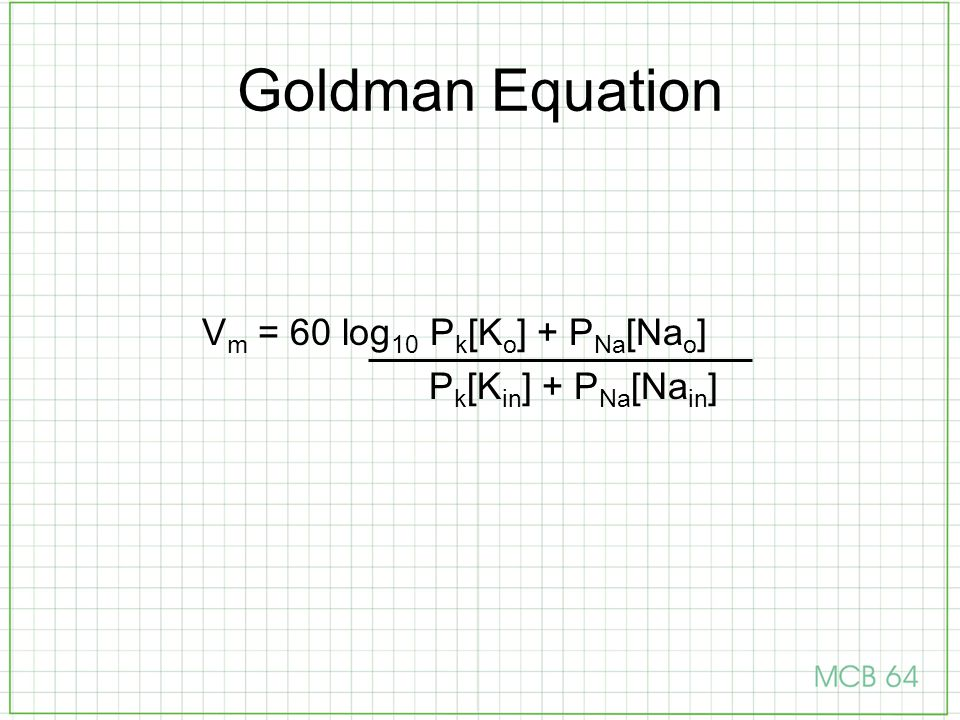 Goldman Equation V m = 60 log 10 P k [K o ] + P Na [Na o ] P k [K in ] + P Na [Na in ]