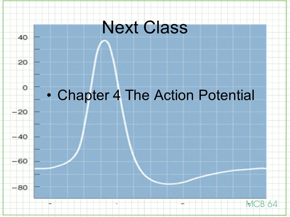 Next Class Chapter 4 The Action Potential