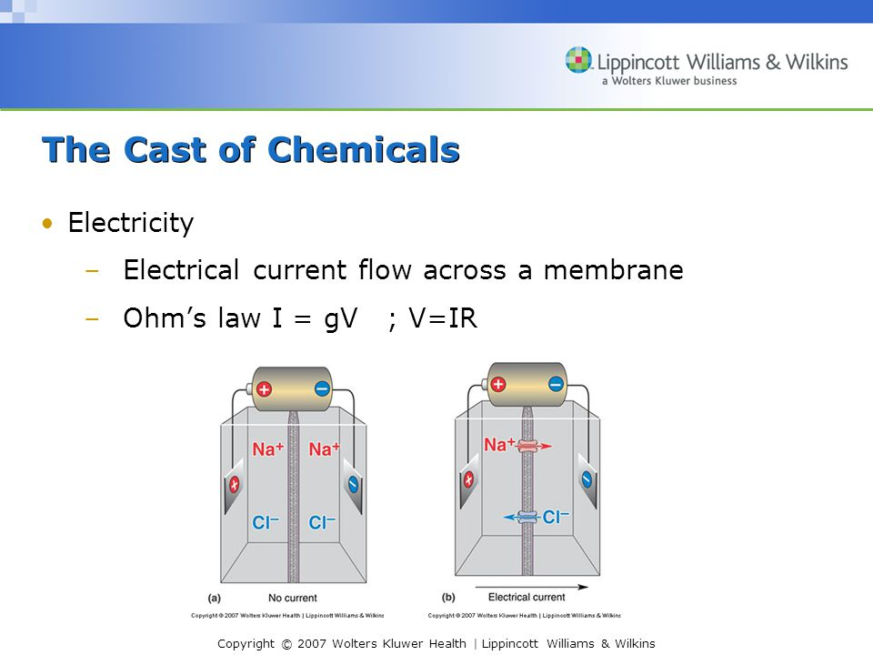 Copyright © 2007 Wolters Kluwer Health | Lippincott Williams & Wilkins The Cast of Chemicals Electricity –Electrical current flow across a membrane –O