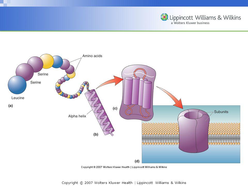 Copyright © 2007 Wolters Kluwer Health   Lippincott Williams & Wilkins