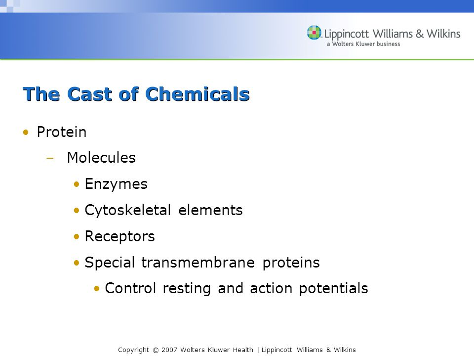 Copyright © 2007 Wolters Kluwer Health | Lippincott Williams & Wilkins The Cast of Chemicals Protein –Molecules Enzymes Cytoskeletal elements Receptor