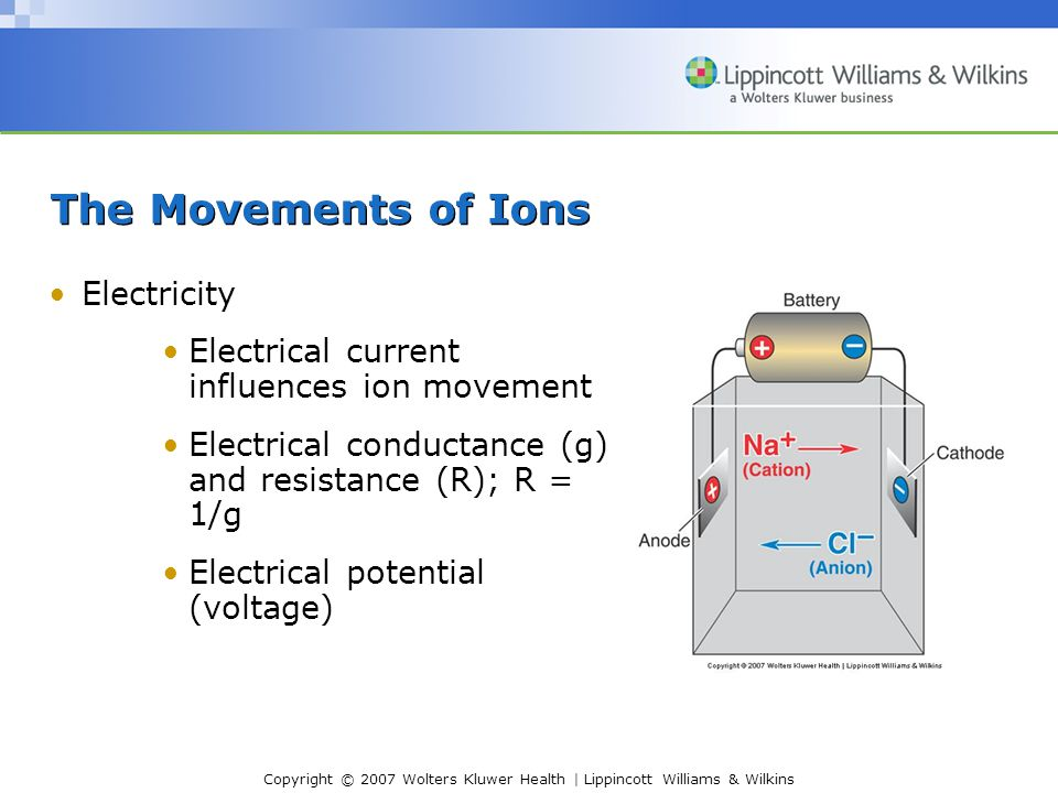 Copyright © 2007 Wolters Kluwer Health | Lippincott Williams & Wilkins The Movements of Ions Electricity Electrical current influences ion movement El
