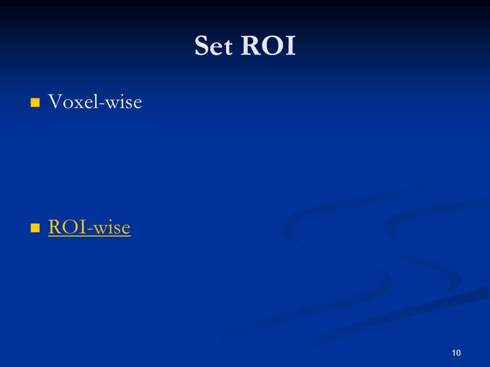10 Set ROI Voxel-wise ROI-wise