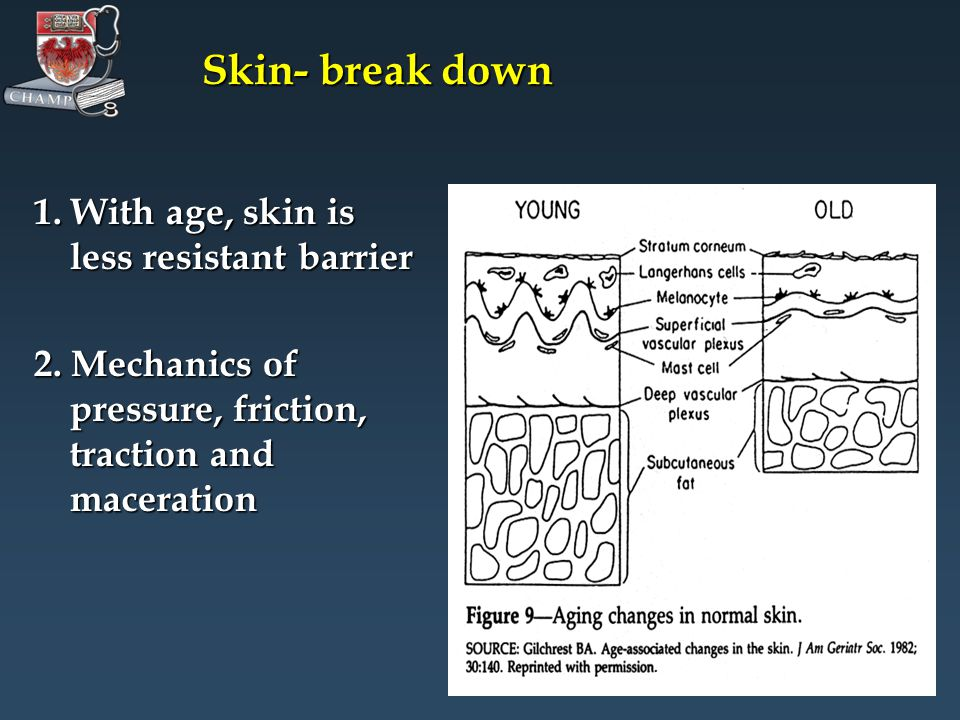 Skin- break down 1. With age, skin is less resistant barrier 2.