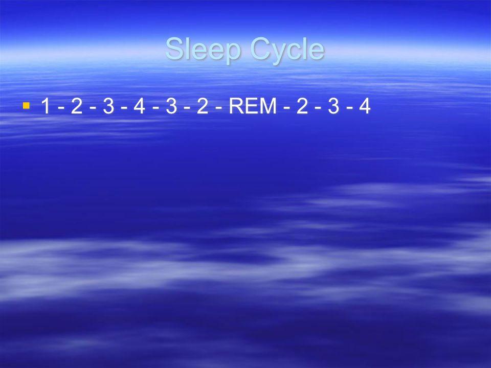 Sleep Cycle 1 - 2 - 3 - 4 - 3 - 2 - REM - 2 - 3 - 4
