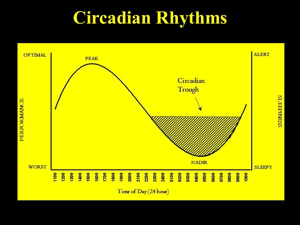 Circadian Trough WORST OPTIMAL PERFORMANCE ALERT SLEEPY SLEEPINESS NADIR PEAK Time of Day (24 hour) Circadian Rhythms