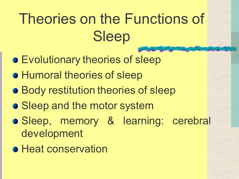Theories on the Functions of Sleep Evolutionary theories of sleep Humoral theories of sleep Body restitution theories of sleep Sleep and the motor system Sleep, memory & learning: cerebral development Heat conservation