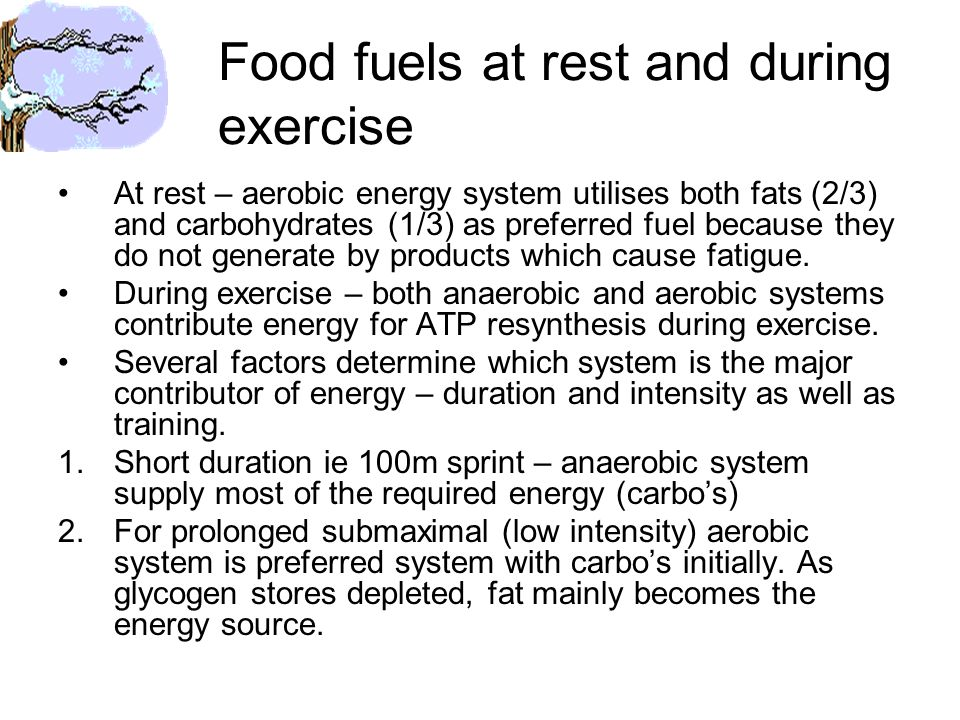 Food fuels at rest and during exercise At rest – aerobic energy system utilises both fats (2/3) and carbohydrates (1/3) as preferred fuel because they