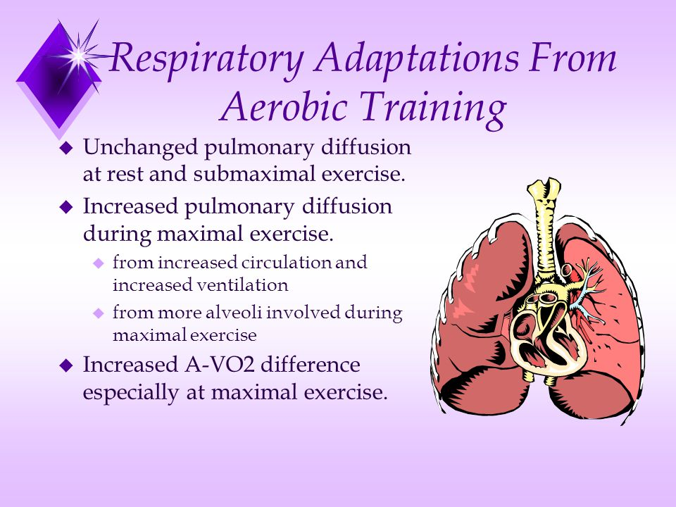 Respiratory Adaptations From Aerobic Training u Unchanged pulmonary diffusion at rest and submaximal exercise. u Increased pulmonary diffusion during
