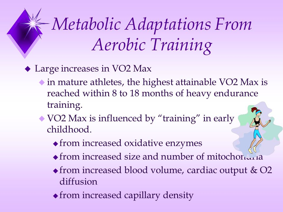 Metabolic Adaptations From Aerobic Training u Large increases in VO2 Max u in mature athletes, the highest attainable VO2 Max is reached within 8 to 1