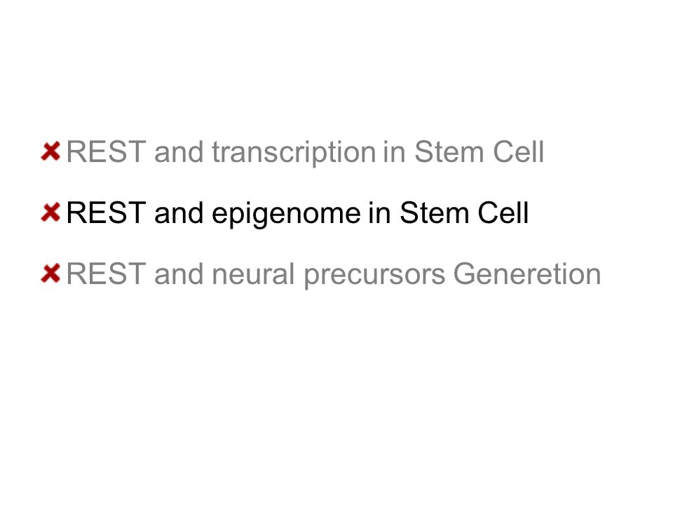REST and transcription in Stem Cell REST and epigenome in Stem Cell REST and neural precursors Generetion