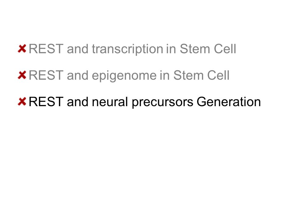 REST and transcription in Stem Cell REST and epigenome in Stem Cell REST and neural precursors Generation