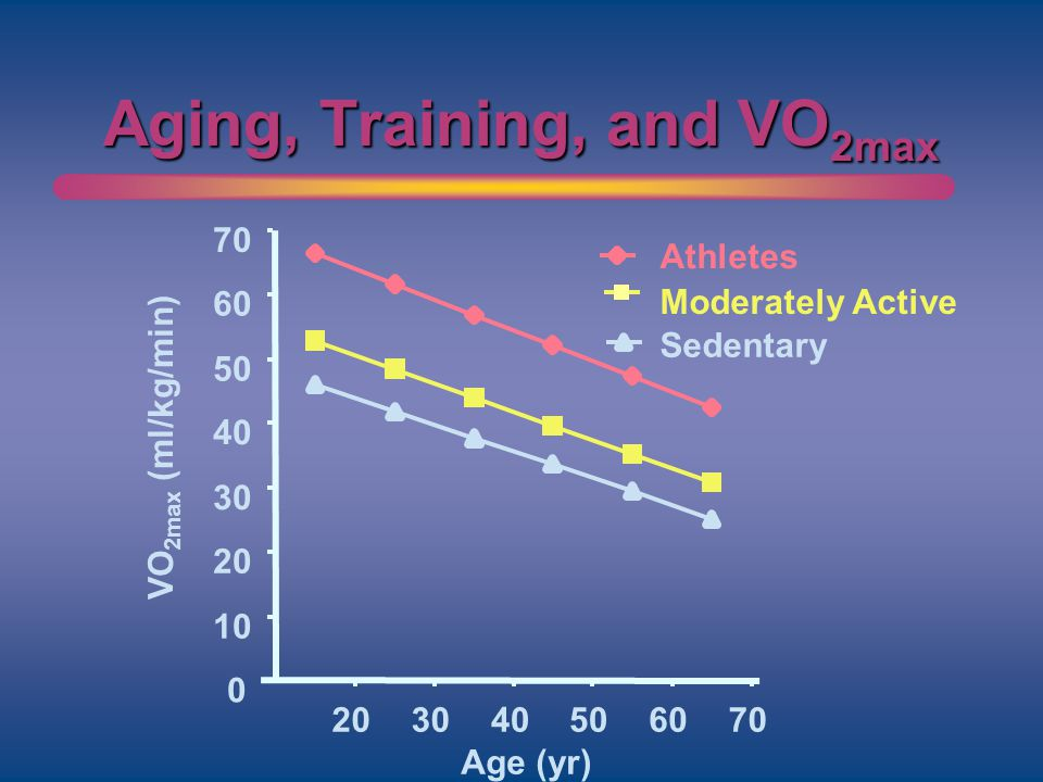 Aging, Training, and VO 2max 0 10 20 30 40 50 60 70 203040506070 Age (yr) VO 2max (ml/kg/min) Athletes Moderately Active Sedentary