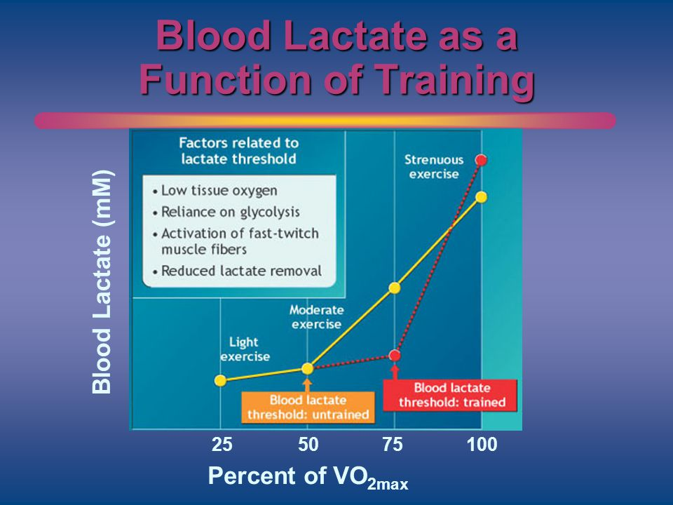 Blood Lactate as a Function of Training Blood Lactate (mM) Percent of VO 2max 255075100