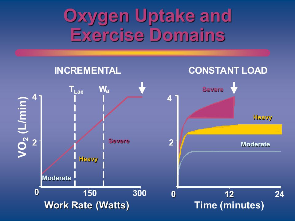 Oxygen Uptake and Exercise Domains 2 012 Time (minutes) 24 4 2 150 Work Rate (Watts) INCREMENTALCONSTANT LOAD Moderate Heavy T Lac W a 300 VO 2 (L/min