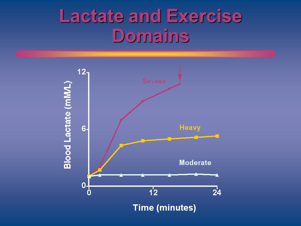 Lactate and Exercise Domains