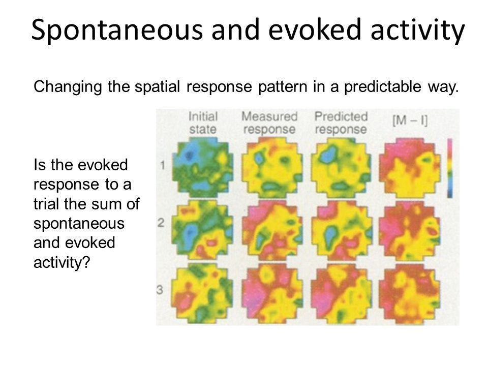 Spontaneous and evoked activity Changing the spatial response pattern in a predictable way. Is the evoked response to a trial the sum of spontaneous a