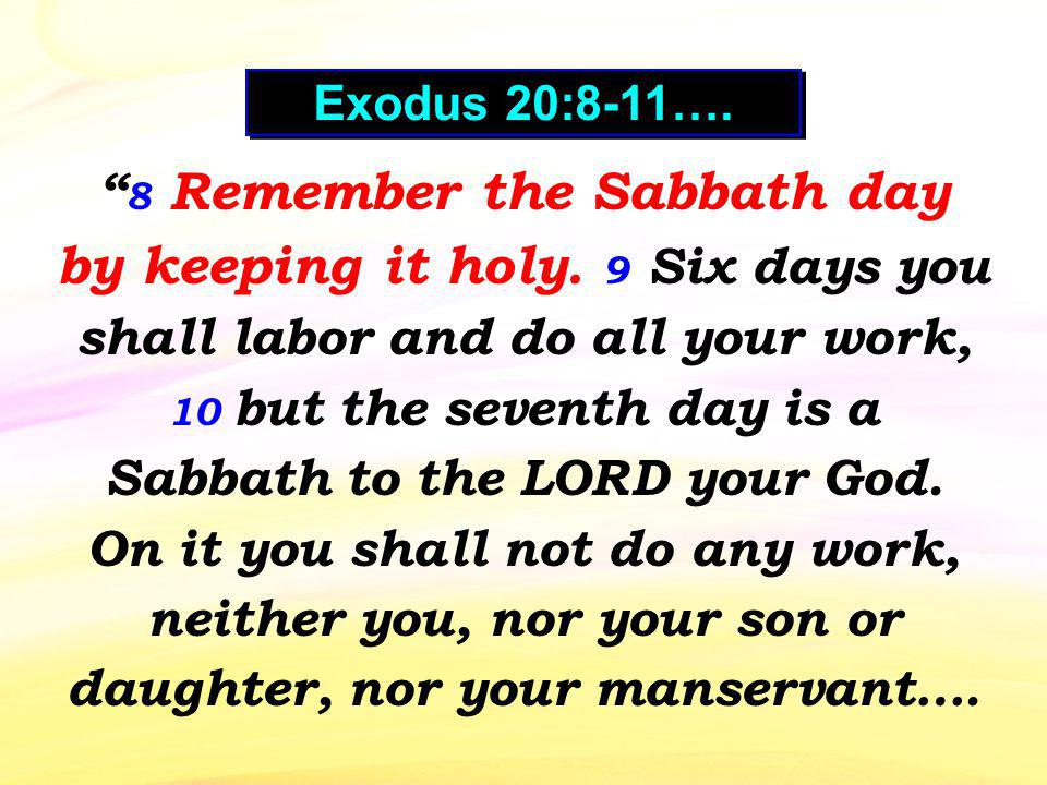 8 Remember the Sabbath day by keeping it holy.