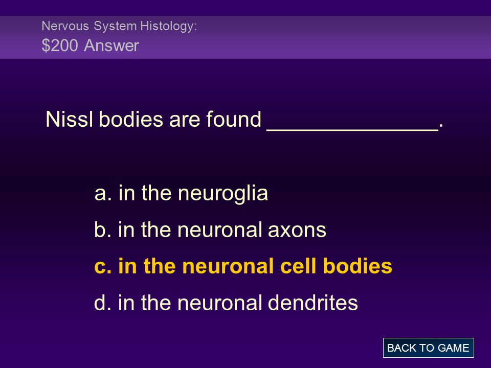 Nervous System Histology: $200 Answer Nissl bodies are found ______________. a. in the neuroglia b. in the neuronal axons c. in the neuronal cell bodi