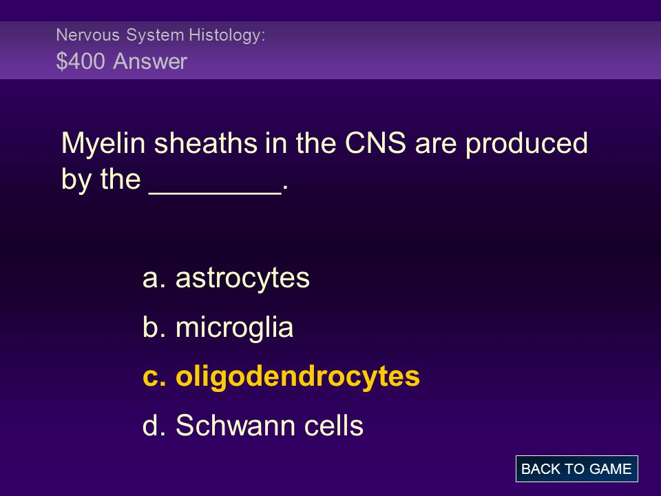 Nervous System Histology: $400 Answer Myelin sheaths in the CNS are produced by the ________. a. astrocytes b. microglia c. oligodendrocytes d. Schwan