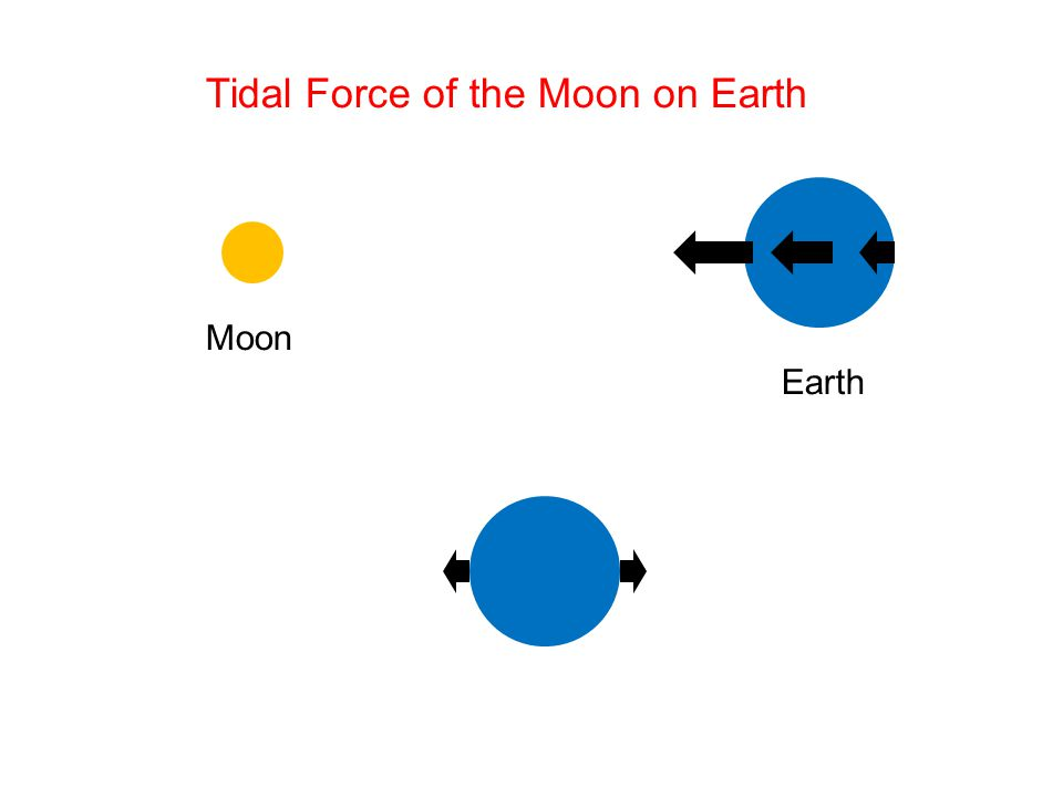 Moon Earth Tidal Force of the Moon on Earth