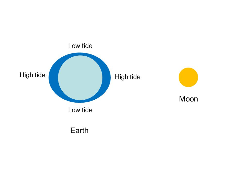 Moon Low tide High tide Earth