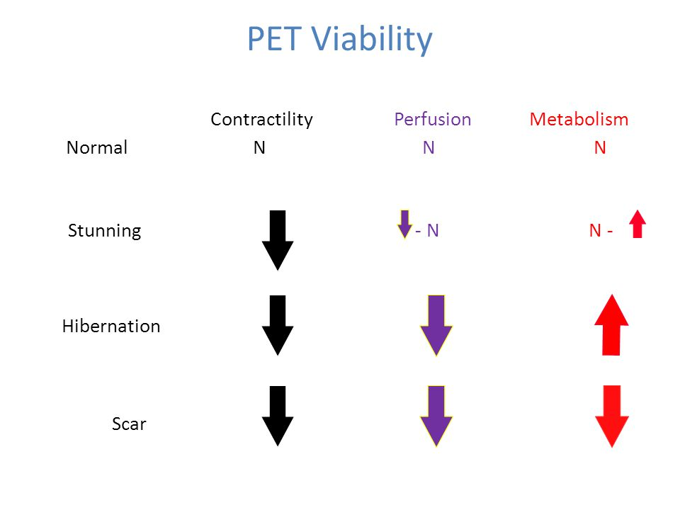 PET Viability Scan Patterns ContractilityPerfusion Metabolism Normal N N N Stunning- N N - Hibernation Scar