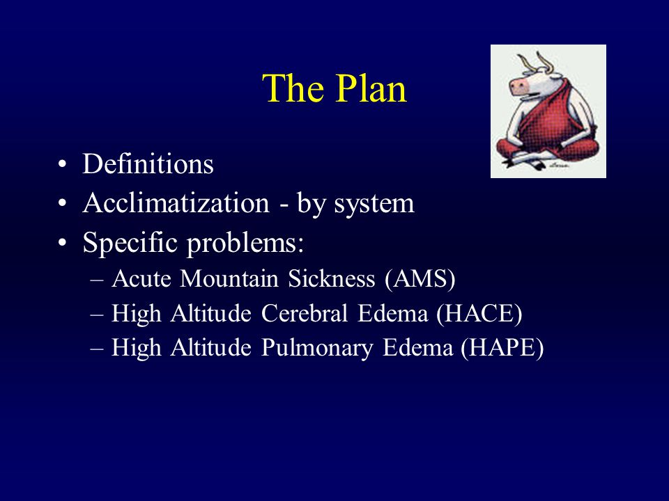 The Plan Definitions Acclimatization - by system Specific problems: –Acute Mountain Sickness (AMS) –High Altitude Cerebral Edema (HACE) –High Altitude