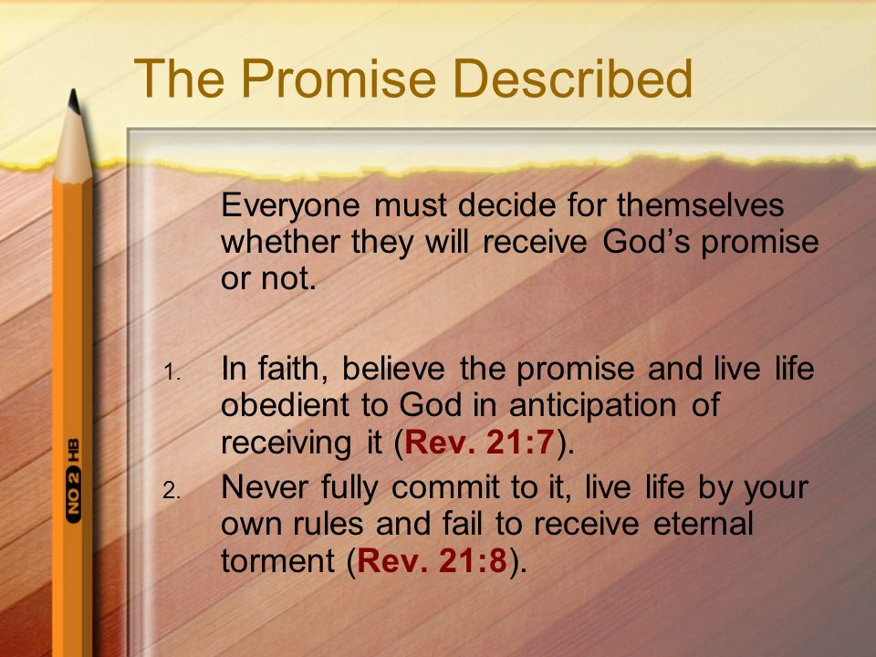 The Promise Described Everyone must decide for themselves whether they will receive Gods promise or not.