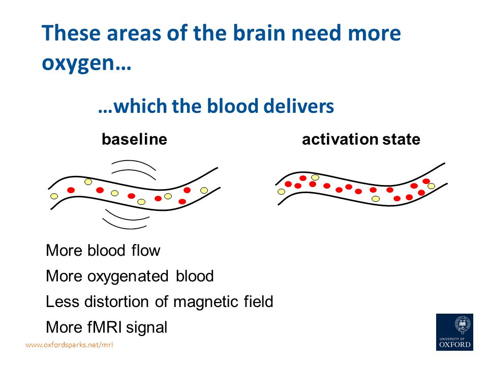 These areas of the brain need more oxygen… activation statebaseline More blood flow More oxygenated blood Less distortion of magnetic field More fMRI