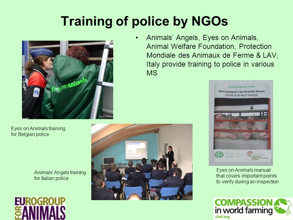 Training of police by NGOs Animals Angels, Eyes on Animals, Animal Welfare Foundation, Protection Mondiale des Animaux de Ferme & LAV, Italy provide training to police in various MS Eyes on Animals manual that covers important points to verify during an inspection Eyes on Animals training for Belgian police Animals Angels training for Italian police