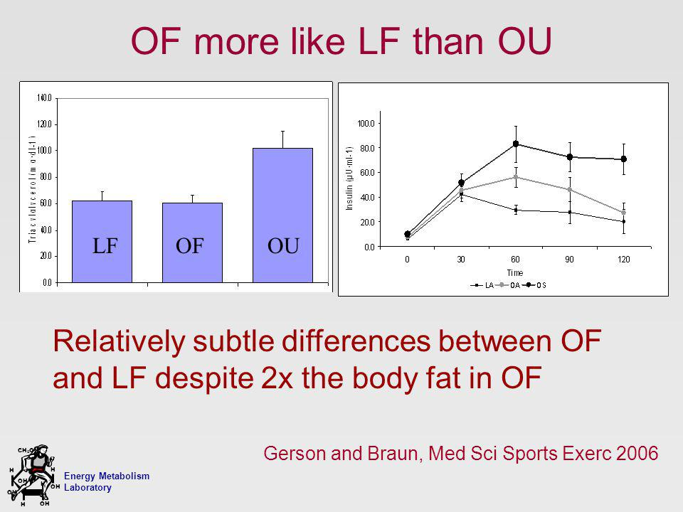 Energy Metabolism Laboratory H H OH CH 2 OH H OH H OF more like LF than OU Relatively subtle differences between OF and LF despite 2x the body fat in