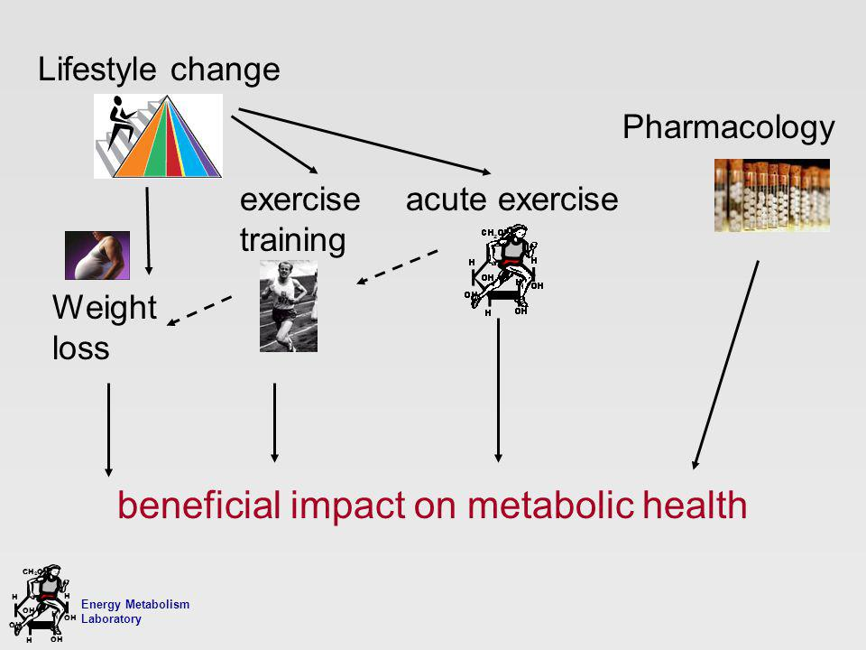 Energy Metabolism Laboratory H H OH CH 2 OH H OH H Weight loss beneficial impact on metabolic health Lifestyle change Pharmacology exercise training acute exercise