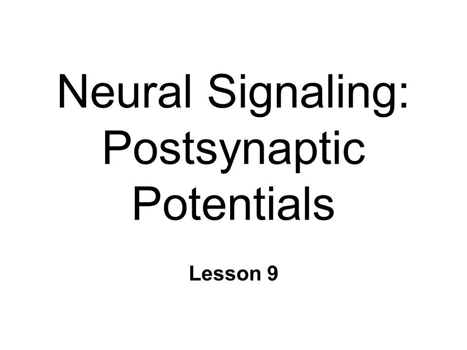 Neural Signaling: Postsynaptic Potentials Lesson 9