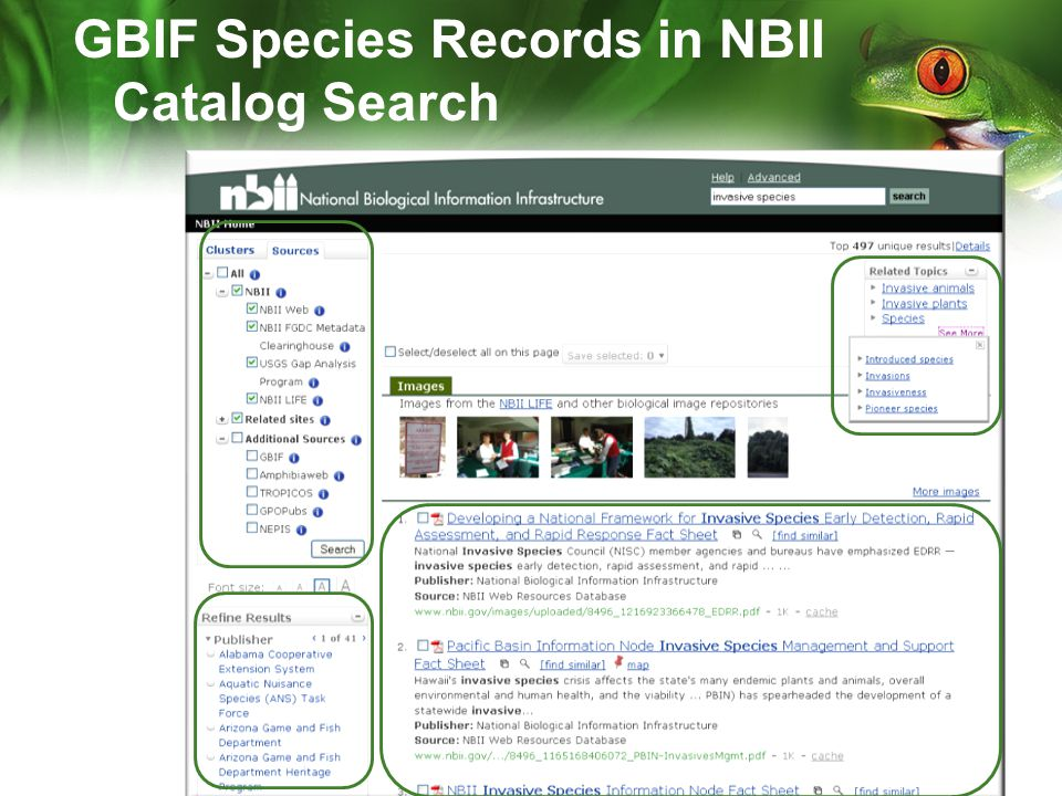 GBIF Species Records in NBII Catalog Search