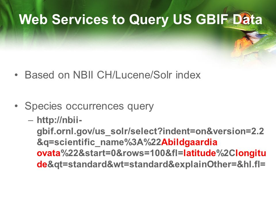 Based on NBII CH/Lucene/Solr index Species occurrences query –http://nbii- gbif.ornl.gov/us_solr/select indent=on&version=2.2 &q=scientific_name%3A%22Abildgaardia ovata%22&start=0&rows=100&fl=latitude%2Clongitu de&qt=standard&wt=standard&explainOther=&hl.fl= Web Services to Query US GBIF Data