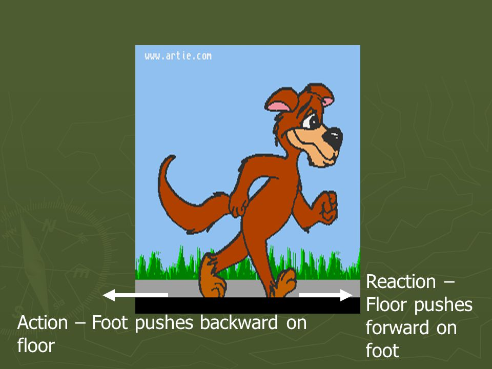 Action – Foot pushes backward on floor Reaction – Floor pushes forward on foot